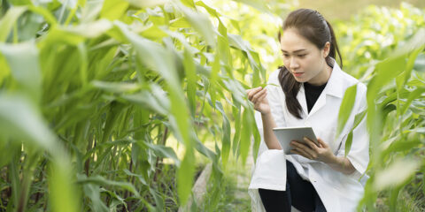 Agriculture, environment and sustainability